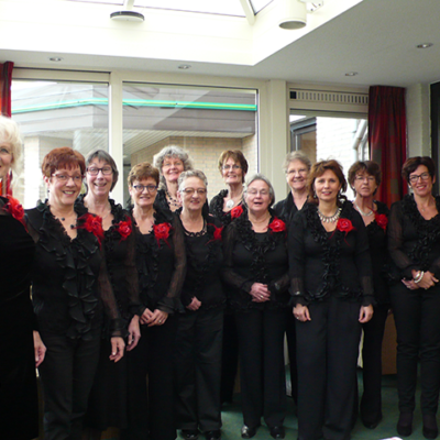 bevelands vrouwenensemble cantando zingen